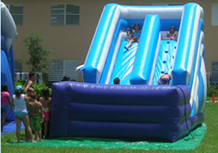 Xtreme Dolphins water Slide II