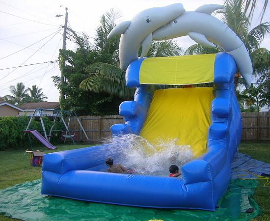 Party rentals   Dolphins water slide   water slides
